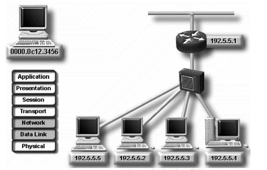 layer netowork IP