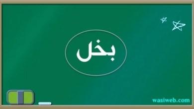 Photo of پر رسول الله ص درود ویل کله چې یې یاد وشي