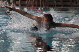 schwimmstar (44)