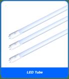 Globe LED Tube