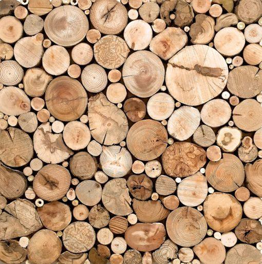 Treibholz Holzbild Holzdeko