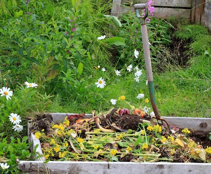 organic waste disposal