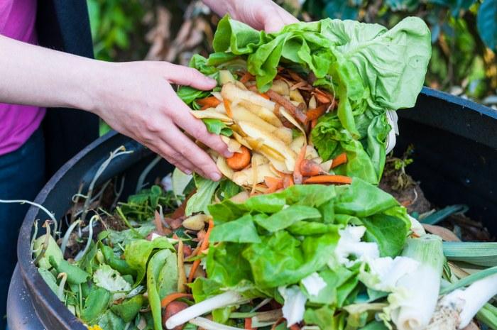 garden waste disposal