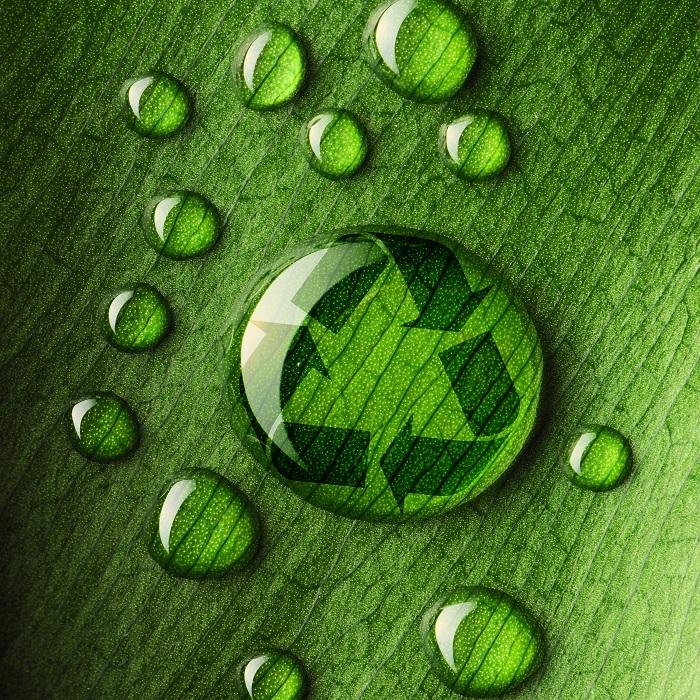 green clearance
