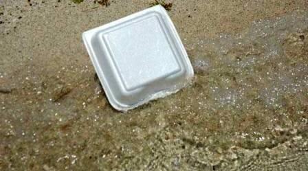 Miami-Dade County Styrofoam Ban