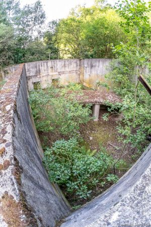 Der verlassene Tierpark im Sommer