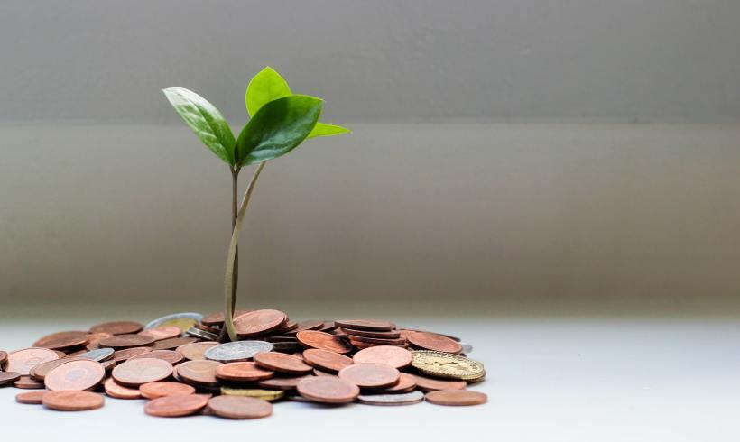 Economia circulara – un cerc prietenos pentru tine si mediu!