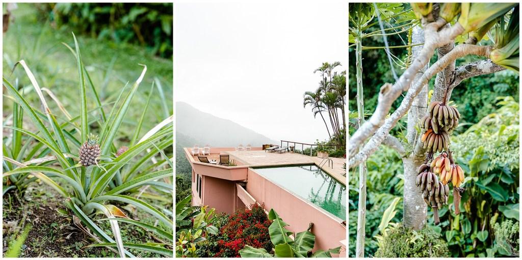 casa flamboyant puerto rico