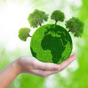 Why not make your Labor Day celebration as green as possible?