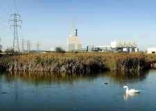 The proposed incinerator site on the edge of King's Lynn