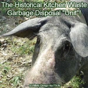 _garbage-disposal-unit