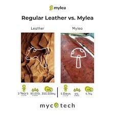 Mcotech watch Mycelium in Industry