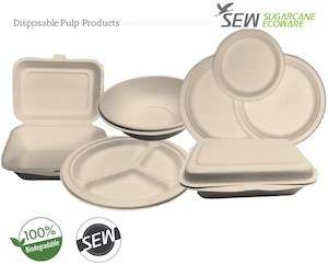 eco Single-Use plates