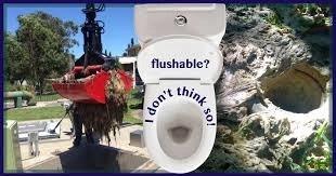 don't flush wipes