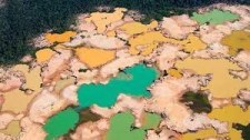 gold mining damage