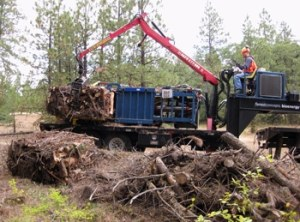 Baling riparian fuel reduction thinnings with Yakama Nation foresters on tribal forestland. Photo: Forest Concepts