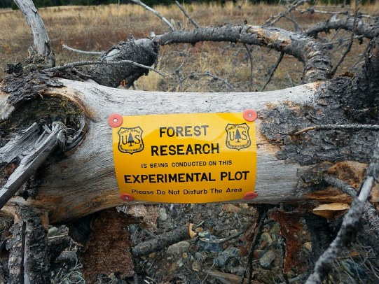 3-2_Develop a tool to evaluate the value of biochar