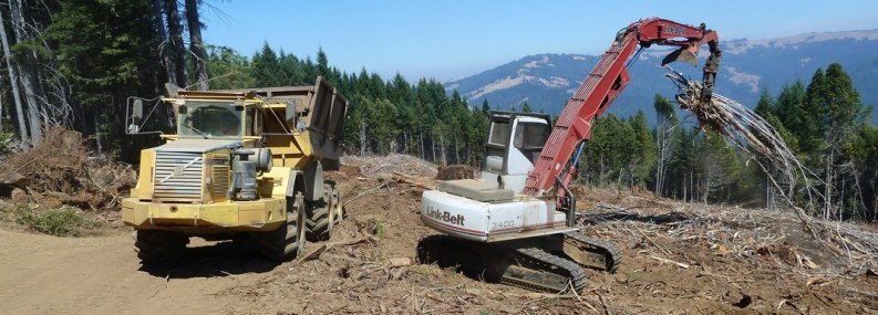 Webinar to highlight the evaluation of economic and environmental benefits of utilizing forest residues