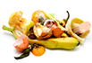 Food Waste & Composting