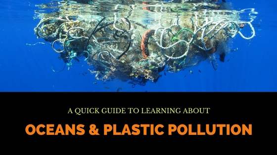Oceans and Plastic Pollution – A Quick Guide