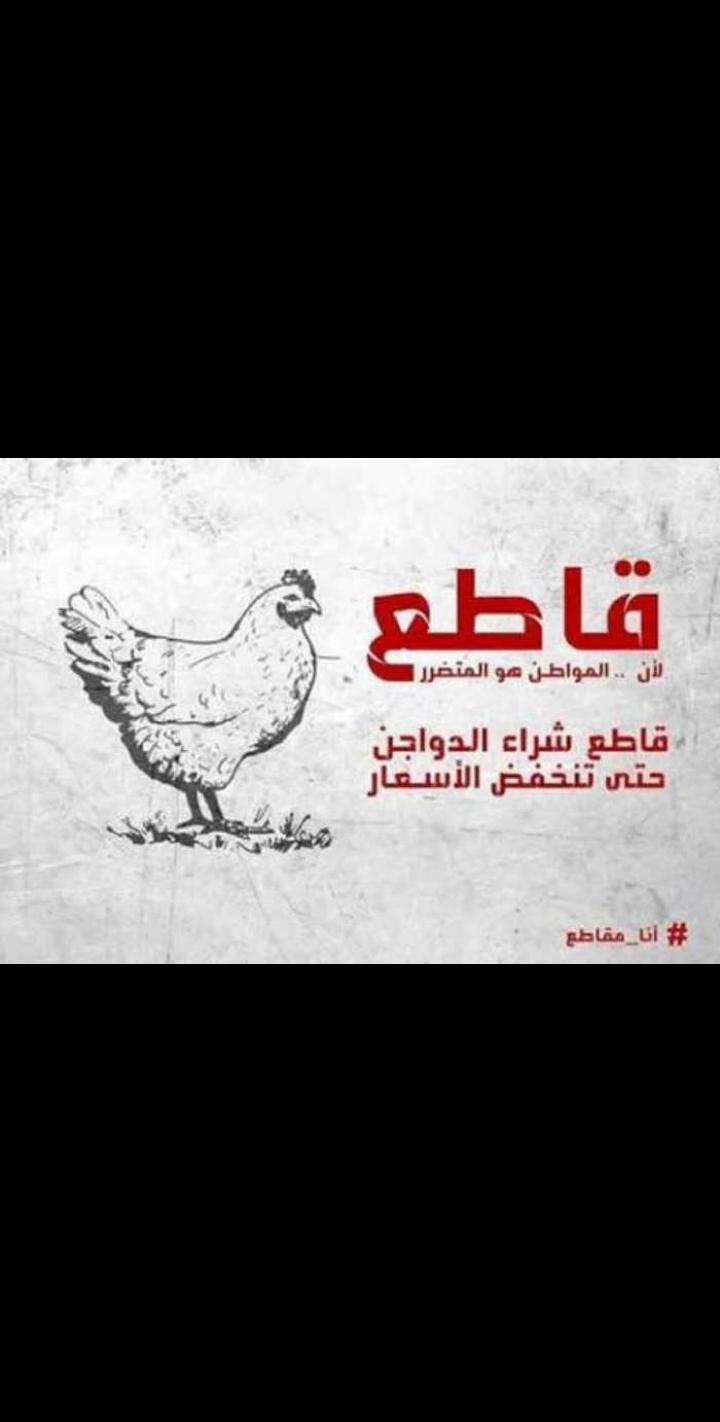 عاجل الشعب الأردني يبدء حملة مقاطعة الدجاج حتى إنخفاض أسعاره