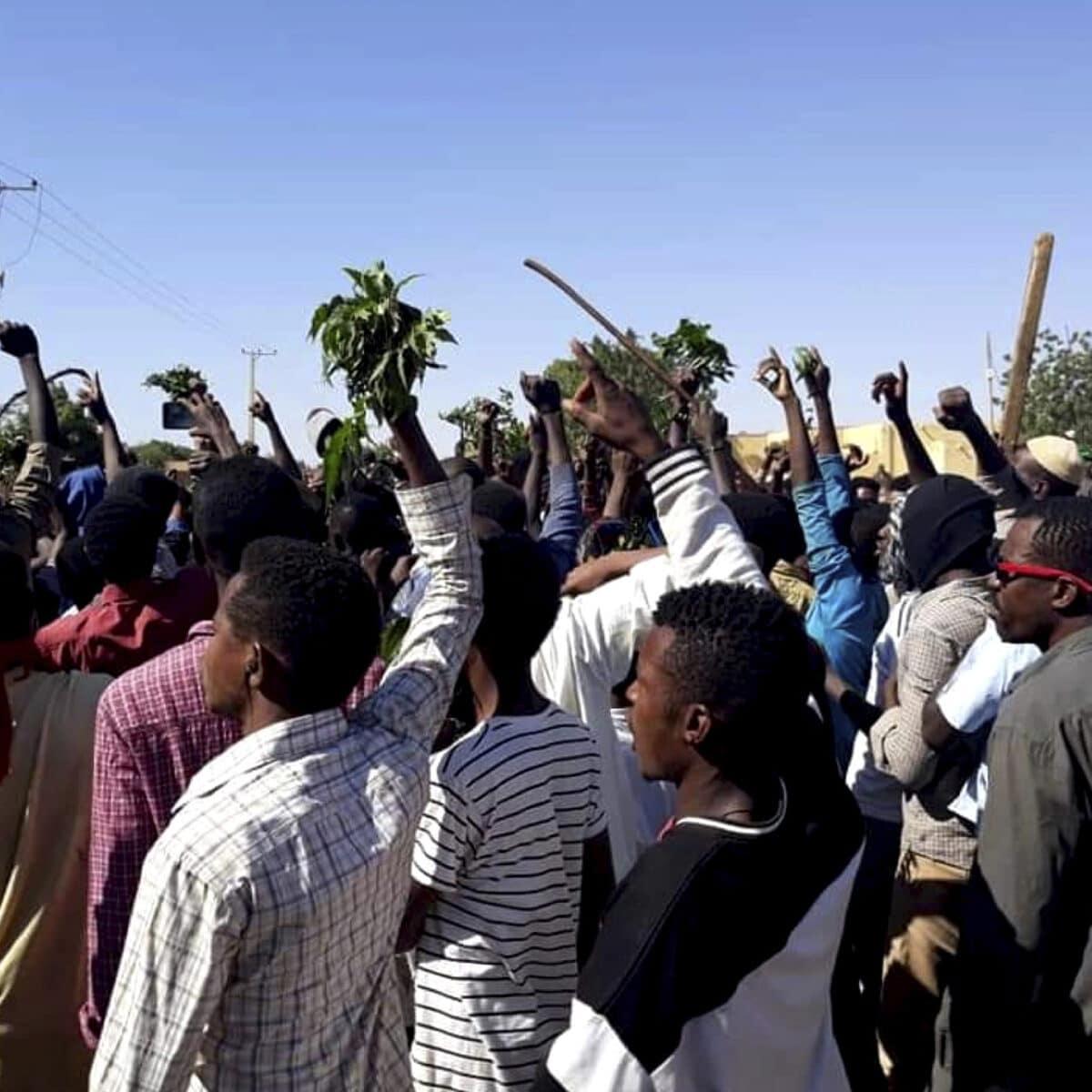 تجمع المهنيين السوداني