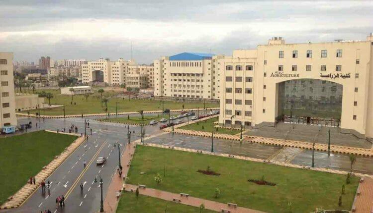 جامعة كفر الشيخ في مصر