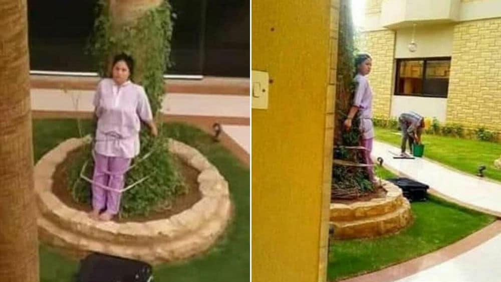 سعوديون يقيدون خادمة في شجرة لسبب صادم