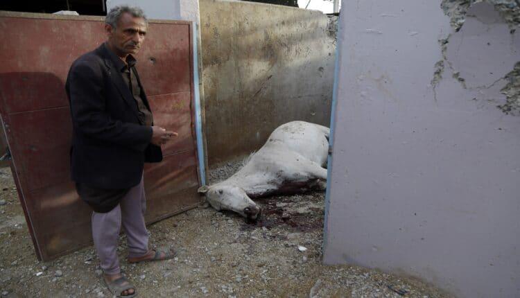 استهداف المقاتلات السعودية اسطبلات الخيول في الكلية الحربية اليمنية