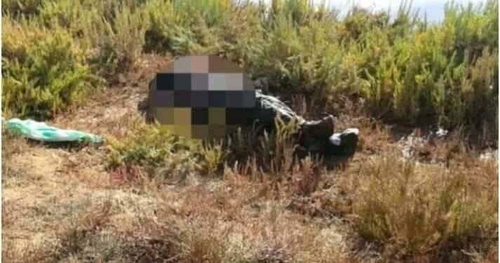 العثور على جثة فتاة محروقة بغابة فيض غريب بولاية سطيف في الجزائر