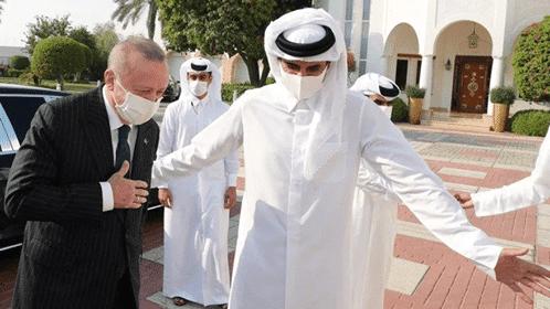 رجب طيب أردوغان وتميم بن حمد