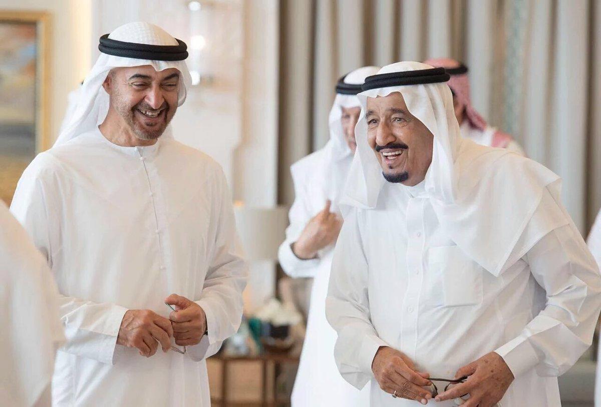 الملك سلمان ومحمد بن زايد
