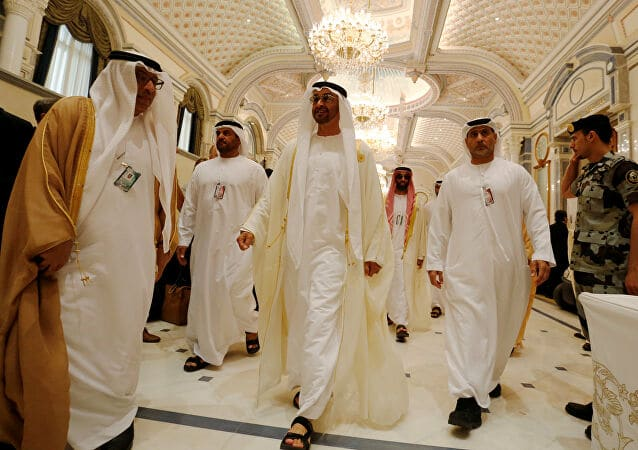 """تقرير مخابراتي يكشف صراعات العائلة الحاكمة في الإمارات """"آل نهيان"""""""