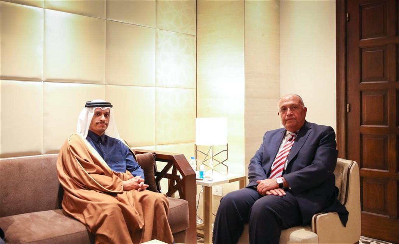 سامح شكري يصف قطر بالدولة الشقيقة