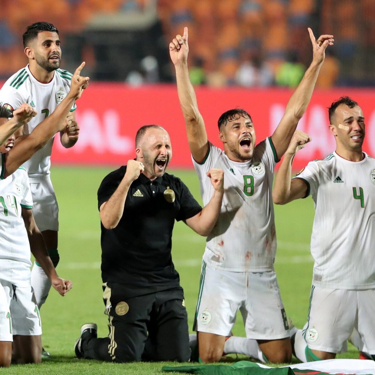 الجزائر وزامبيا يتأهلان إلى نهائي الأمم الأفريقية
