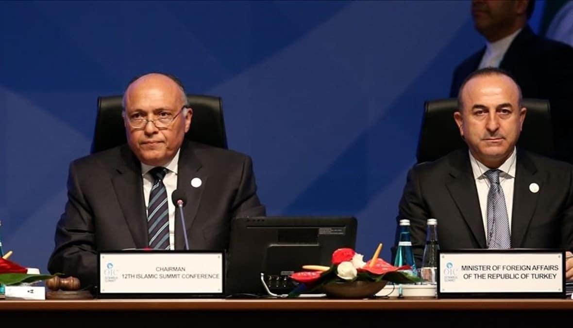 أول اتصال عالي المستوى بين مصر وتركيا.. هذه تفاصيله