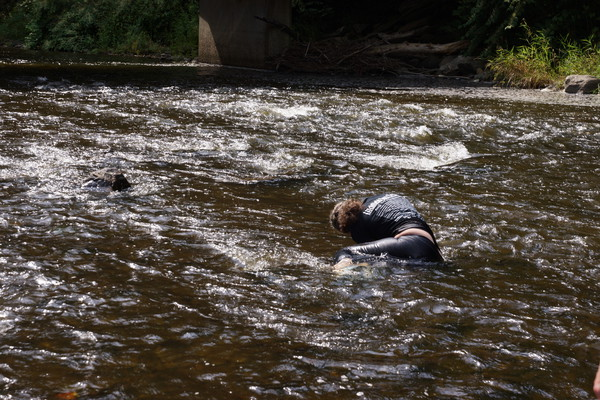 قتل معلمة ورميها في النهر في قضاء السدير بمحافظة الديوانية في العراق