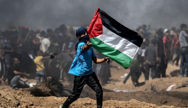 صحفية أمريكية تضامن مع فلسطين