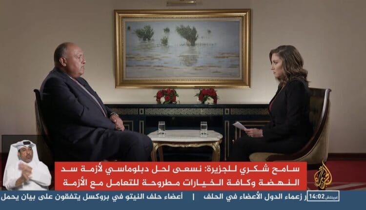 سامح شكري خلال لقاء مع الجزيرة القطرية
