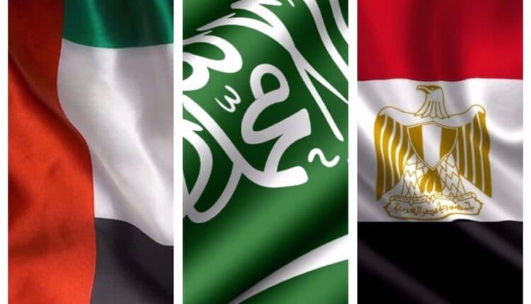 الوطنية شركة عسكرية مصرية تعرض للبيع