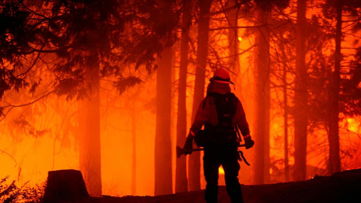 حريق غابات عكار شمال لبنان