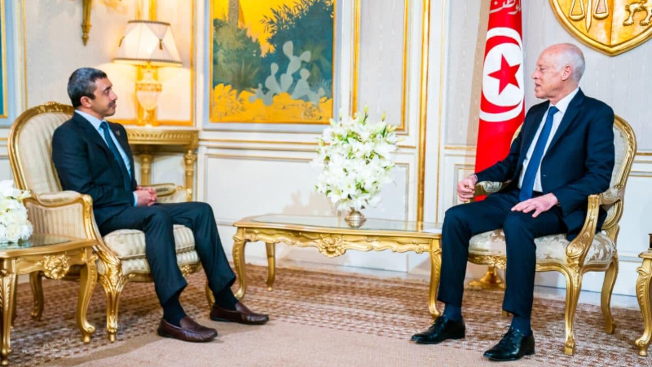عبدالخالق عبدالله يؤيد انقلاب تونس