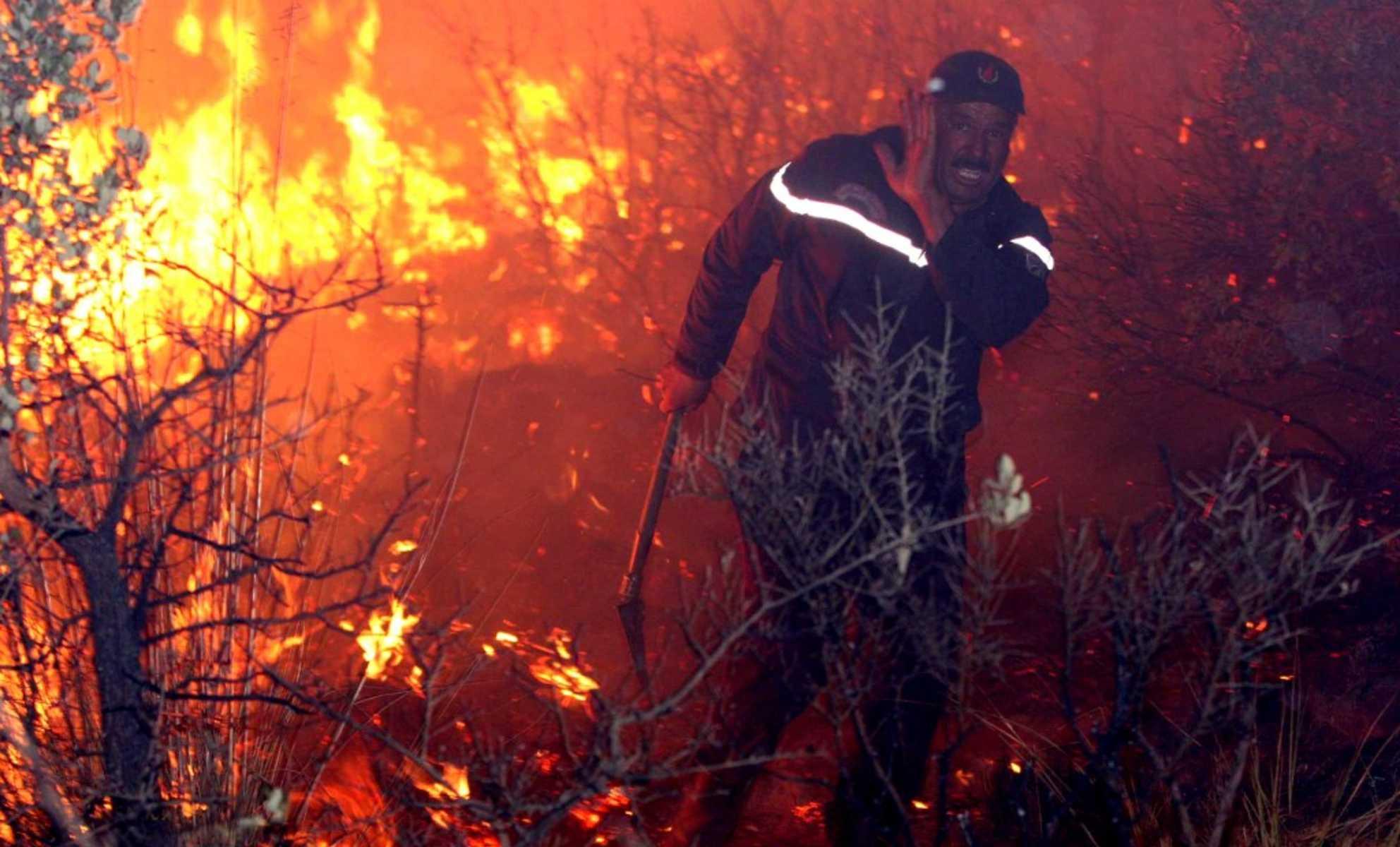 الجزائر تحترق وتشعل مواقع التواصل.. أين طائرات العرب التي هبت لإطفاء النيران في إسرائيل ؟!