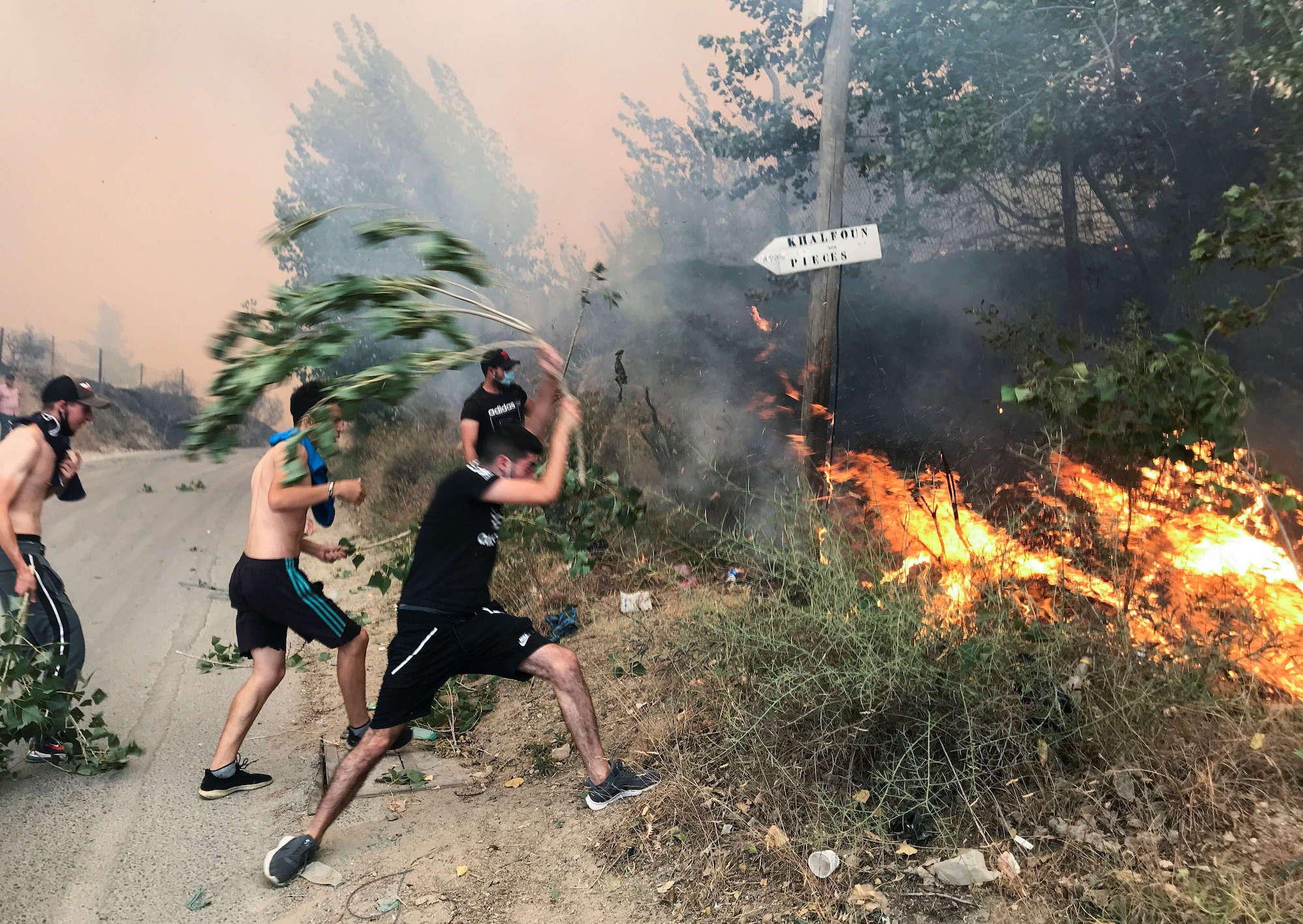 النيران توحشت.. مشاهد مخيفة من الجزائر ومناظر تدمي القلب (فيديو)