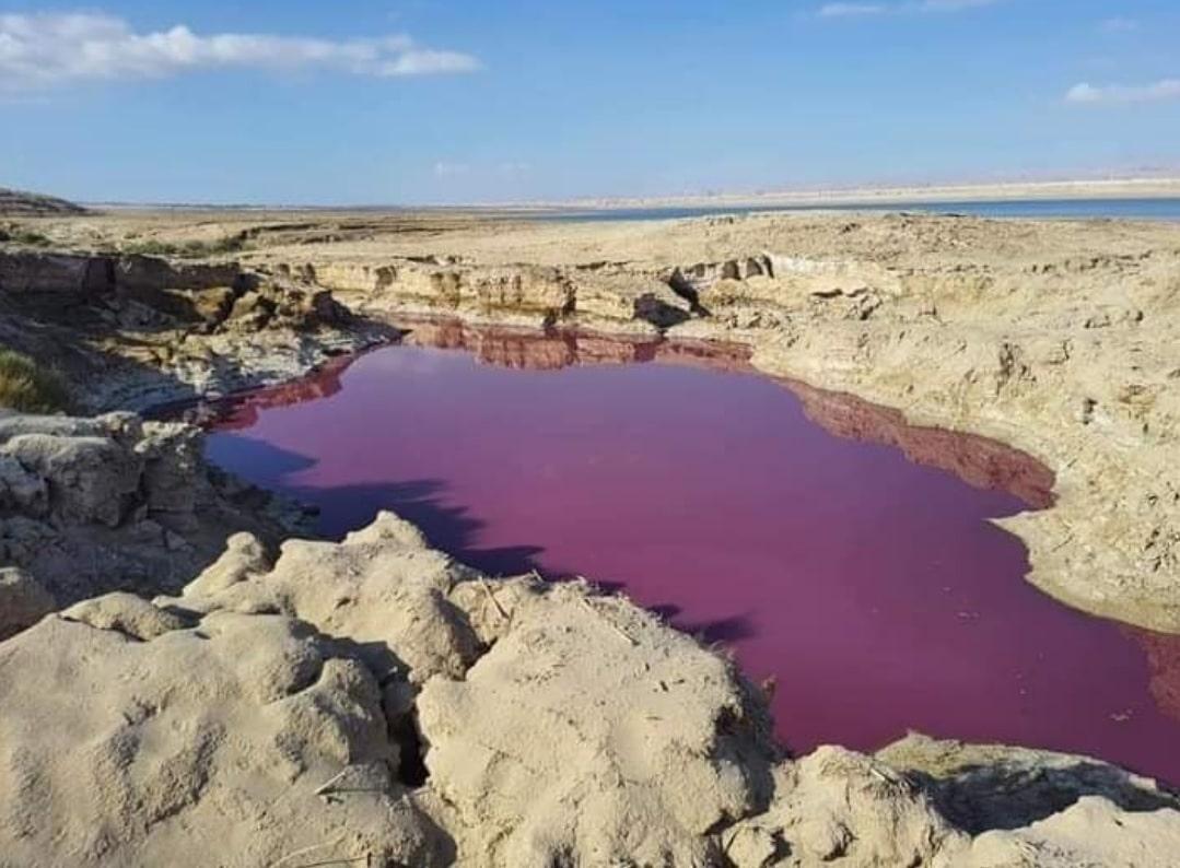 بركة مائية بجانب البحر الميت تتحول إلى اللون الأحمر