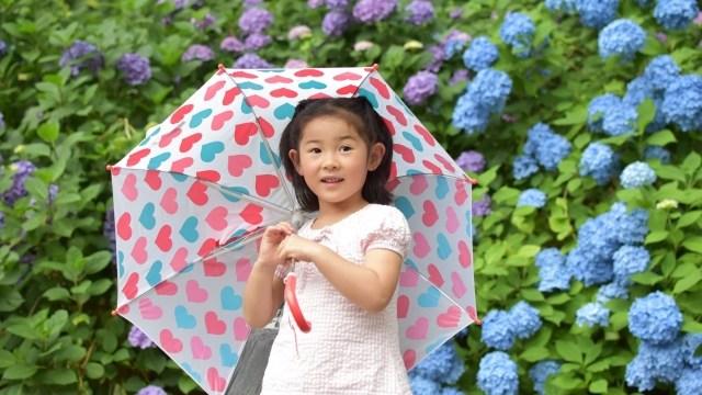 傘は幼児にいつから持たせればいい?安全に使う方法と注意点とは?