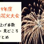 新横浜花火大会打ち上げ数は何発⁈2019年度の大きさや形・見どころは⁈