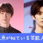 宮沢氷魚がジェヒョン(NCT)やジミンに似てるか検証!韓国人ハーフなの⁈