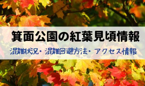 府営箕面公園の紅葉見頃の時期は⁈アクセス・混雑状況・穴場スポット情報!