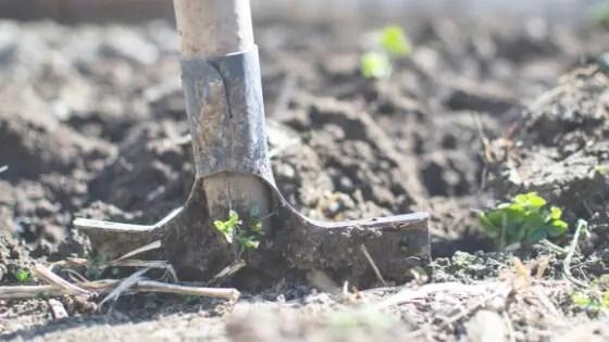 土を処分する